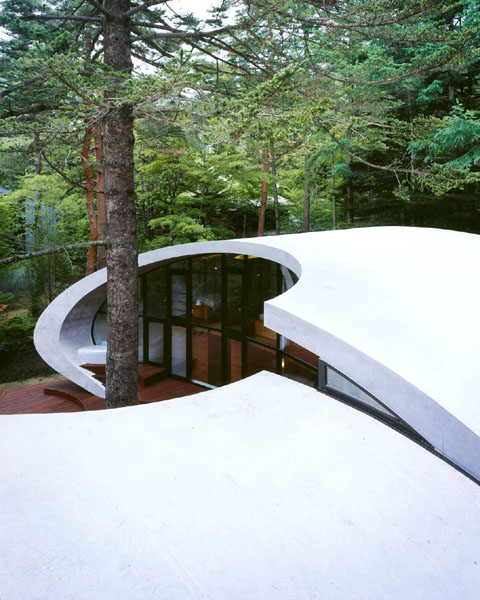 shell-house-6