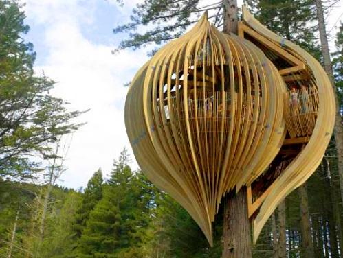 treehouse234